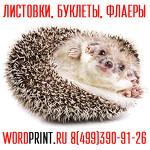 Типография Ворд принт