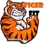 TigerFIT - бойцовский клуб для начинающих