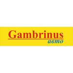 Gambrinus авто