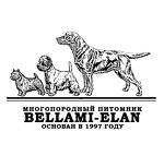 Беллами Елан многопородный питомник собак