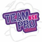 Team Pro NSK - мастерская по стайлингу и дооборудованию авто.