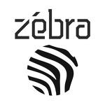 Zebravideo