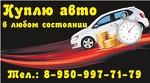 8950-997-71-79 Скупка авто