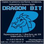 DragonBit