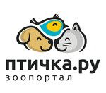 Птичка.ру - зоопортал