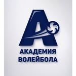 Академия волейбола