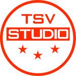 Создание и продвижение сайтов от студии TSV (Textseovip)