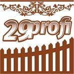 29 профи