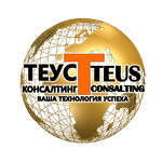 TEUS Consulting Company