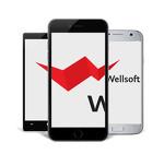 IT-компания WELLSOFT