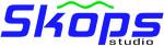 Создание и продвижение сайтов Skops-studio