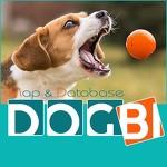 Геоинформационный кинологический портал DOGBI