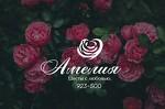 Цветы Амелия