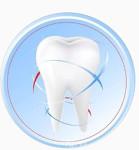 Стоматологическая клиника Альфа Стом
