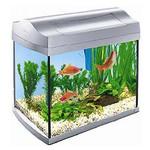 Магазин аквариумов ArovanAqua в Костроме. Купить аквариумы, террариумы