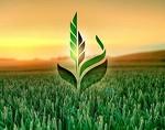 АО Сельскохозяйственная Экспортная Корпорация